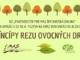 Princípy rezu ovocných drevín